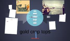 gold crop tops