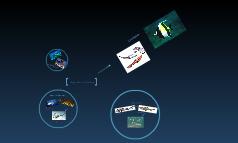 Origen y Evolucion de los Peces.