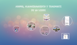 Copy of Programa De Formación