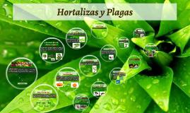 Hortalizas y Plagas