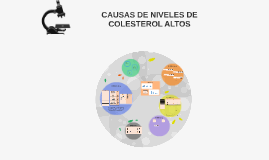 CAUSAS DE NIVELES DE COLESTEROL ALTOS