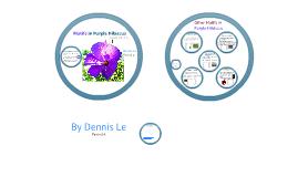 Purple Hibiscus Project on Motifs