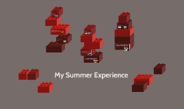 My Summer Experience