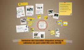 Validation du nouveau logo airbag et validation de pare-sole