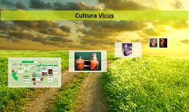 Cultura Vicus
