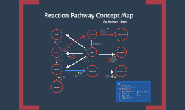 Reaction Pathway Concept Map