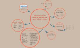 Gestión Directiva Sector Público