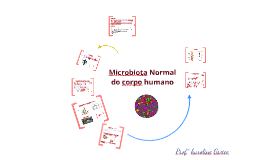 Copy of Microbiota Normal