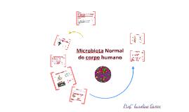 Copy of Microbiota Normal