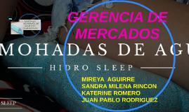 GERENCIA DE MERCADOS