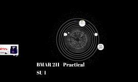 BMAR 211 - Practical