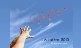 TA Intern 2013