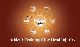 Athletic Training Ch 5: Head Injuries