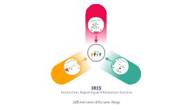 IRIS - Interaction Framework