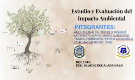 Copy of Estudio ambiental de un Proyecto de Inversión