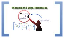 Copy of Mutaciones experimentales