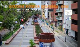 BULEVAR AVENIDA COLOMBIA