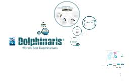 Dolphinaris tdm NO