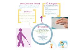 Copy of Discapacidad Visual