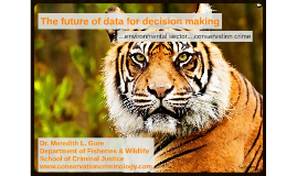 The future of data for decision-making in the environmental sector