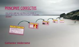 PRINCIPIOS CORRECTOS