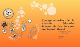 Conceptualización de la Atención Educativa Integral de las Personas con RM