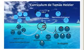 Prezumé de Tamás Heizler - Español