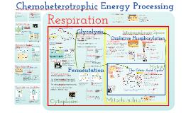 TKR_AP Bio- Energy 4: Chemoheterotrophic Nutrition