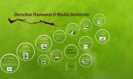 Deerechos Humanos & Medio Ambiente