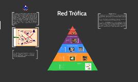 Copy of Red Trófica