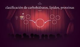clasificación de carbohidratos, lipidos, proteinas