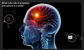 What is the role of glutamate in a stroke?