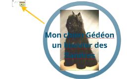 Mon chien Gédéon