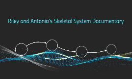 Riley and Antonia's Skeletal System Documentary