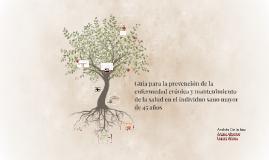 Guía para la prevención de la enfermedad crónica y mantenimi