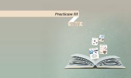 Practicum III