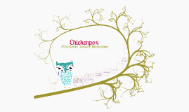 Copy of Chickenpox (Variella Zoster Infection)