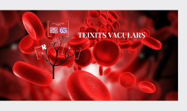 Teixits vasculars