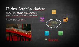 Pedro Andrés Núñez