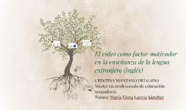 El vídeo como factor motivador en la enseñanza de la lengua