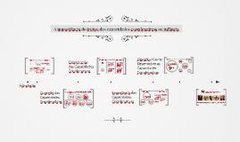 Treino das Capacidades Coordenativas