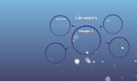 5 BLOQUES