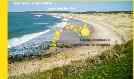Copy of Copy of Copy of Costas platenses y oceánicas del Uruguay