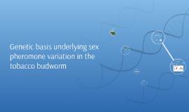 Presentatie Evolutiebiologie practicum