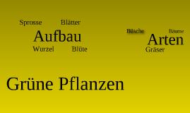 Copy of Grüne Pflanzen