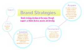 Marketing: Brand Strategies