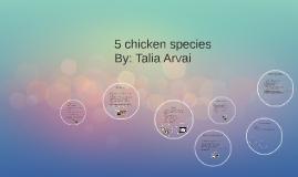 5 chicken species