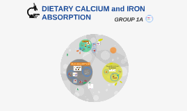 Copy of CALCIUM and IRON ABSORPTION
