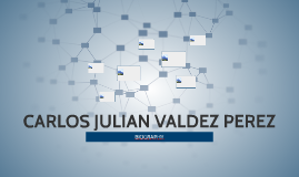CARLOS JULIAN VALDEZ PEREZ