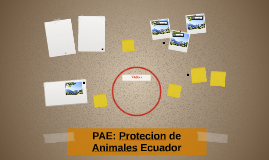 PAE: Protecion de Animales Ecuador